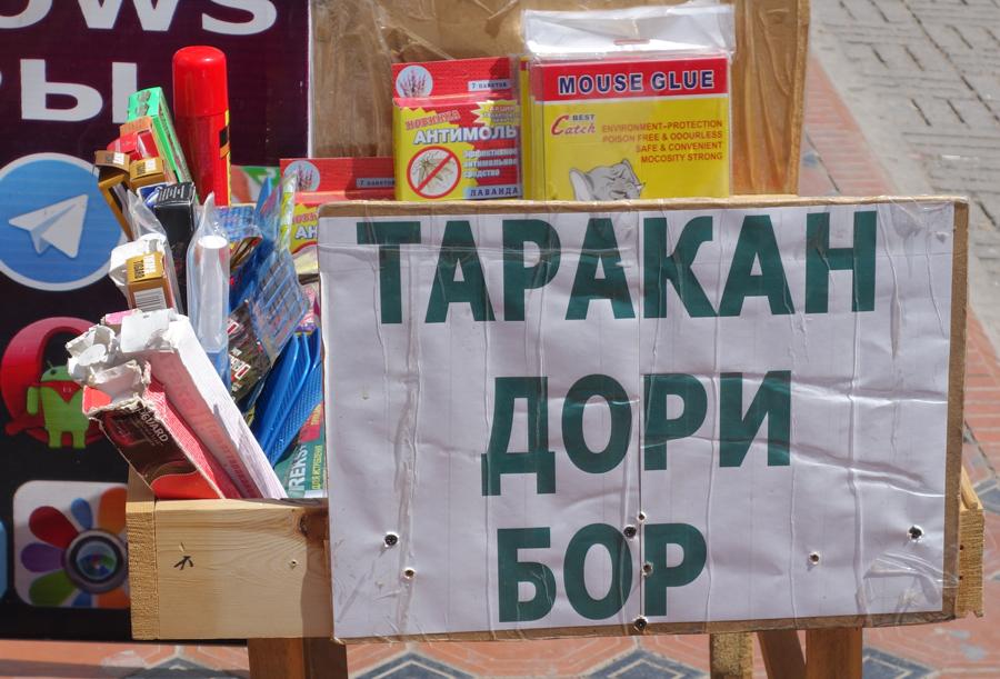 русский язык узбекистан